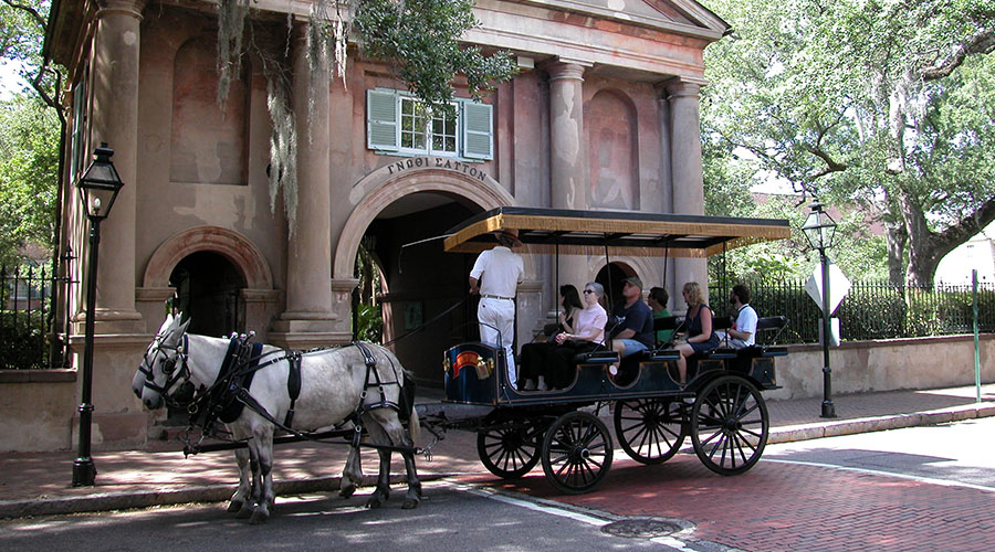 Horse carriage tour in downtown charleston south carolina