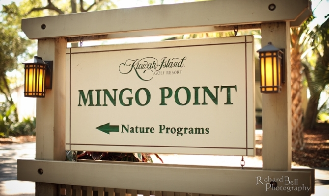 Mingo Point
