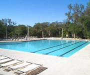 Night Heron Park Pool