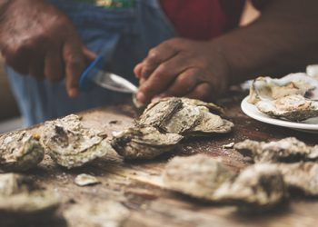 Mingo_Point_Oyster_Roast
